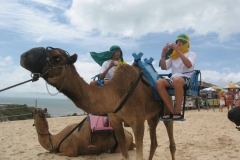 Camel_Ride_at_the_dunes